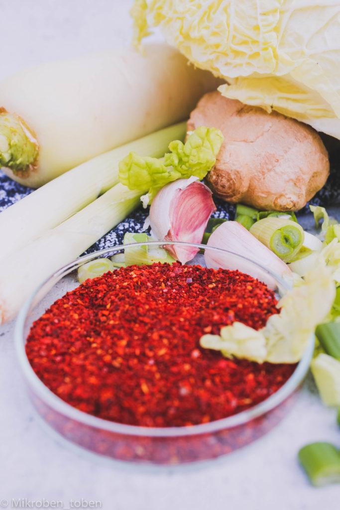 Kimchizutaten - Chili