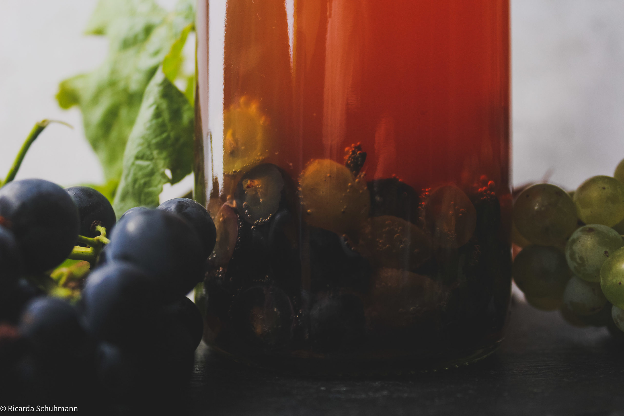 Kombucha mit Trauben fermentiert