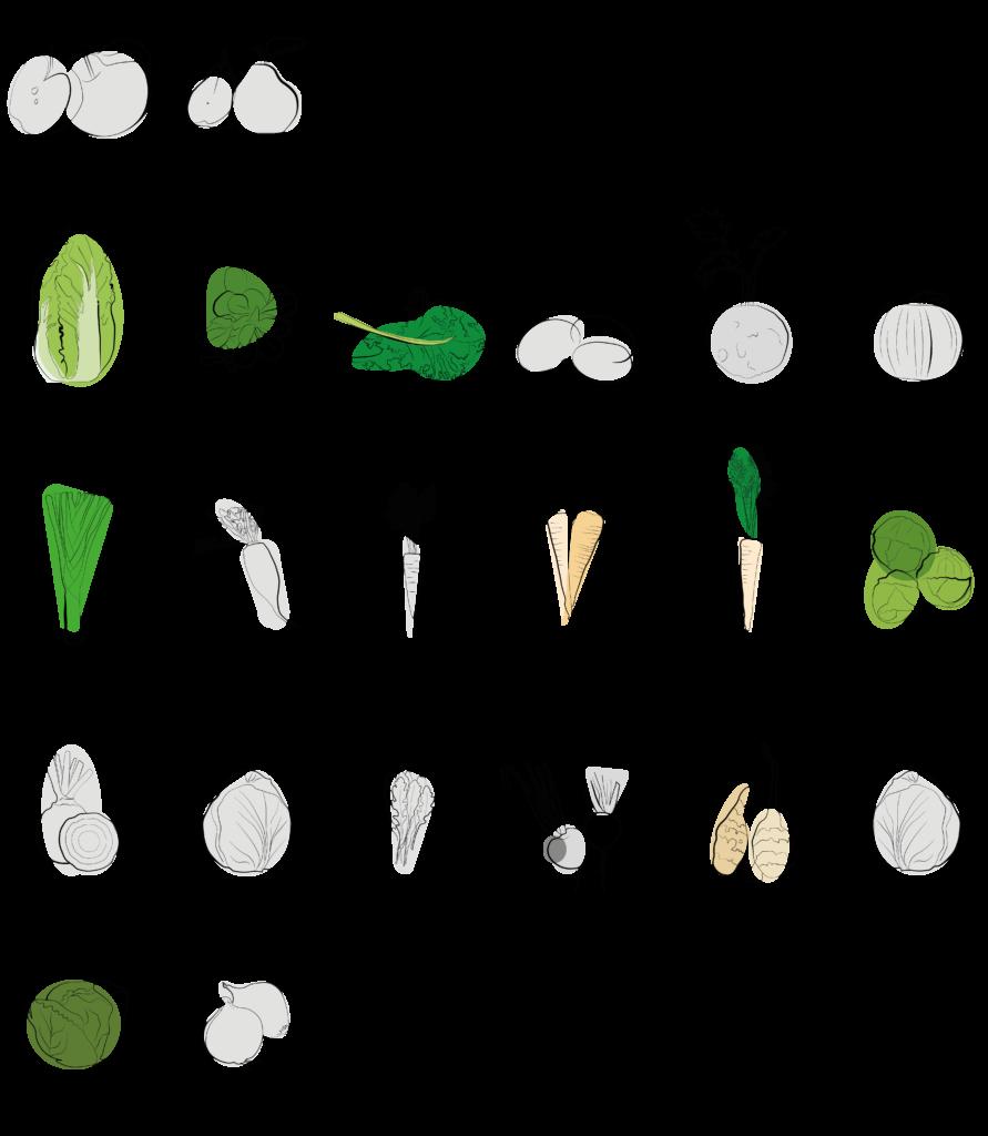 Saisonal verfügbares Gemüse Februar