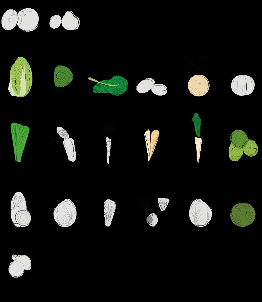 Saisonal verfügbares Gemüse Januar