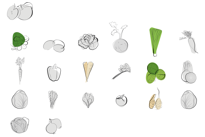 Saisonal verfügbares Obst und Gemüse