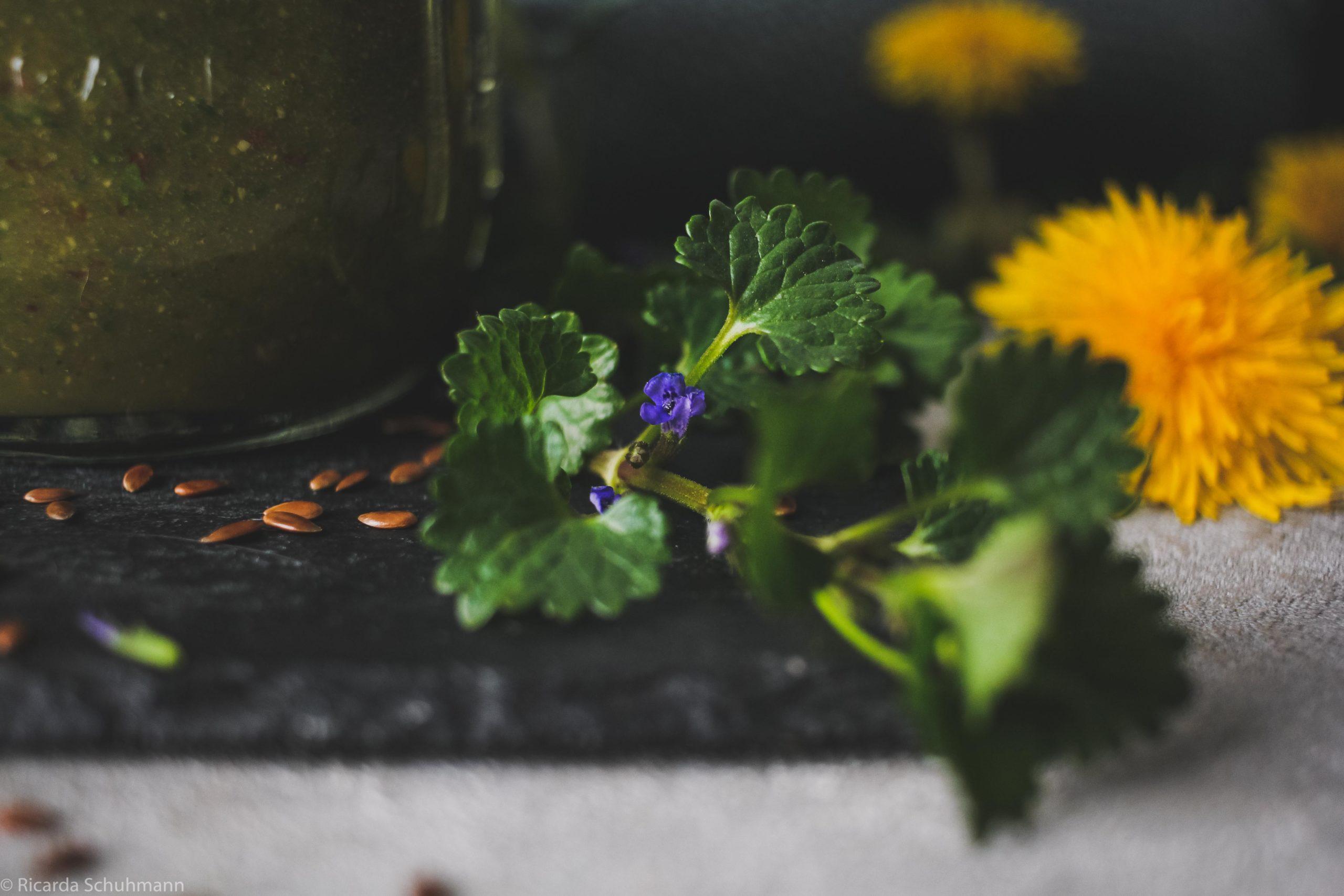 Wildkräutersmoothie mit Wasserkefir hergestellt