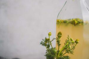 Wasserkefir mit Ananaskamille in der Zweitfermentation