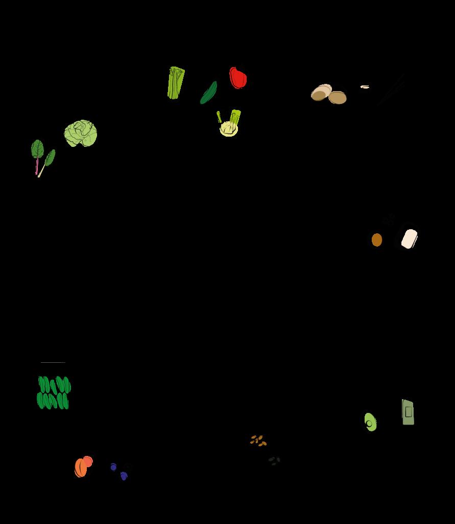 Der Leitfaden für eine gesunde Bowl mit Fermenten