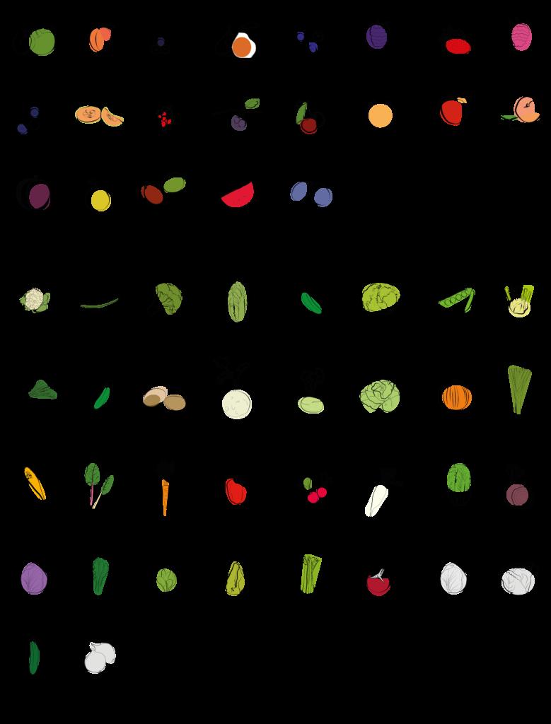 Regionales und saisonales Gemüse und Obst im August