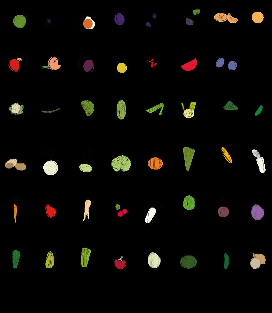 Saisonkalender September für die Fermentation